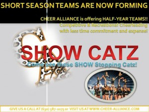 show catz image2